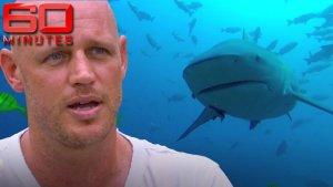 Bull Shark Attacks Diver, Takes Arm and Leg, But Diver Perseveres